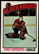 1976-77 Topps #100 Tony Esposito NM Near Mint Chicago Blackhawks